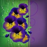 Weihnachtskarte mit einem Blumenstrauß von Pansies Lizenzfreie Stockbilder