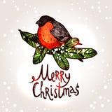 Weihnachtskarte mit Hand gezeichnetem Bullfinch Lizenzfreies Stockbild