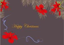 Weihnachtskarte mit Hibiscusblumen Stockbild