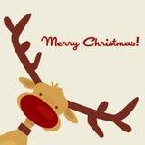 Weihnachtskarte mit Ren Lizenzfreies Stockfoto