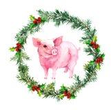 Weihnachtskarte - Tannenzweige, Mistelzweig, reizendes Schwein watercolor stock abbildung