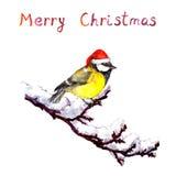 Weihnachtskarte - Vogel im roten Hut an der Niederlassung mit Schnee watercolor Stock Abbildung