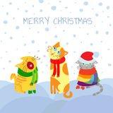 Weihnachtskatzen Lizenzfreies Stockfoto
