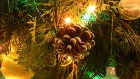 Weihnachtskegel und Farblicht stock video footage