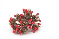 Weihnachtskiefer-Kegel und rote Beeren Stockbild