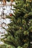 Weihnachtskiefer mit Lichtern stockfotos