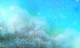 Weihnachtskiefernniederlassung in den Strahlen des hellen Abschlusses oben, des blauen Hintergrundes mit Reflexionen von Sternen  stock abbildung
