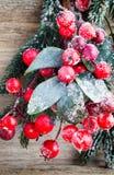 Weihnachtskranz von den roten Beeren, von einem Pelzbaum und von den Kegeln Stockfotografie