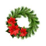 Weihnachtskranz von Kiefer Zweigen und ponsettia blüht Lizenzfreie Stockbilder