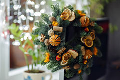 Weihnachtskranz von Weihnachtsbäumen, von Tangerinen, von Orangen und von Brustbeeren Lizenzfreie Stockbilder