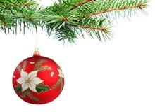 Weihnachtskugel auf einem Baum Lizenzfreie Stockbilder