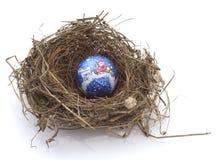 Weihnachtskugel im Nest eines Vogels stockfotos