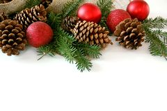 Weihnachtskugel, Kiefern-Kegel und Immergrün-Grenze lokalisiert auf Weiß Stockfotografie