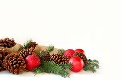Weihnachtskugel, Kiefern-Kegel und immergrüne Grenze lokalisiert auf Whit Stockfotografie