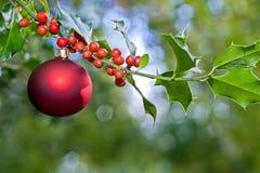 Weihnachtskugel und -stechpalme Stockfotos