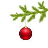 Weihnachtskugel und Zweig-Baum Lizenzfreies Stockfoto