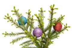 Weihnachtskugeln auf Frühlinge Pelzbaum Zweig stockfoto