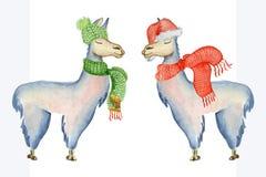 Weihnachtslamaillustration mit Sankt-Hut und -schal netter Illustration der Winteraquarelltiere Kinder Stockbilder