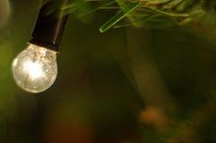 Weihnachtslampe, die auf einem Zweig eines Weihnachtsbaums hängt Grünes Blatt mit einem großen Wassertropfen Lizenzfreies Stockfoto