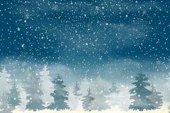 Weihnachtslandschaft mit fallendem Weihnachtsschnee, Koniferenwaldfeiertagswinterlandschaft für frohe Weihnachten und glückliche  Stockfoto