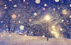 Weihnachtslandschaft mit funkelnden Lichtern Stockfotos