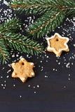 Weihnachtslebkuchen. lizenzfreies stockbild