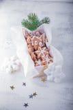 Weihnachtslebkuchen mit Feiertagsdekoration Lizenzfreies Stockbild