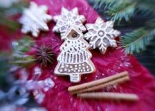 Weihnachtslebkuchenplätzchen Stockbild