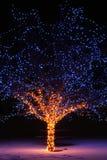 Weihnachtslichter Lizenzfreies Stockfoto