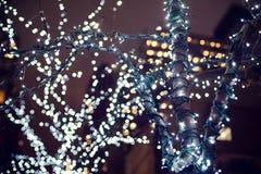 Weihnachtslichter, die in einem Baum hängen Lizenzfreie Stockbilder