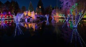 Weihnachtslichtfeier und -anzeige stockfotografie