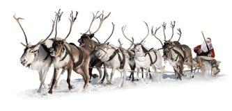 Weihnachtsmann in einem Pferdeschlitten Lizenzfreie Stockfotografie