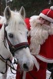 Weihnachtsmann mit weißem Pferd Stockfotos