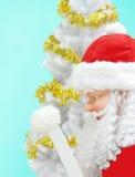Weihnachtsmann-und Weihnachtsbaum lizenzfreie stockfotos