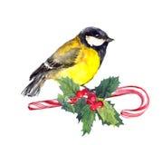 Weihnachtsmeisevogel auf Zuckerstange und Weihnachtsmistelzweig watercolor lizenzfreie abbildung
