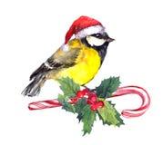 Weihnachtsmeisevogel in rotem Sankt-Hut auf Zuckerstange und Weihnachtsmistelzweig watercolor lizenzfreie abbildung
