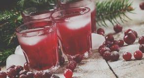 Weihnachtsmoosbeercocktail mit dem Eis, verziert mit Tannenzweig stockfoto