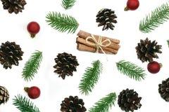 Weihnachtsmuster-Tannenbrunchs und Kiefernkegel auf dem weißen backg Stockbilder