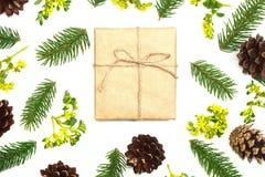 Weihnachtsmuster-Tannenbrunchs und Kiefernkegel auf dem weißen backg Stockfotos