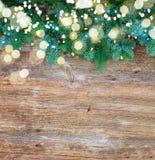 Weihnachtsneue immergrüne Baumaste Stockfoto