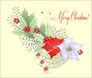 Weihnachtsniederlassung mit Poinsettia Lizenzfreie Stockfotos