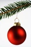Weihnachtsnoch Leben Lizenzfreies Stockfoto