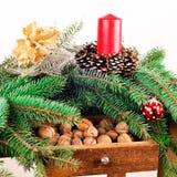 Weihnachtsnoch Leben Lizenzfreie Stockbilder
