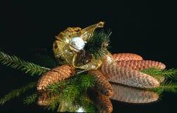 Weihnachtsnoch Leben. Lizenzfreies Stockfoto