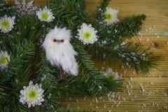Weihnachtsphotographiebild mit Baumasten und nette fluffly Eulendekoration mit den Winterblumen besprüht mit Schnee Stockfotografie
