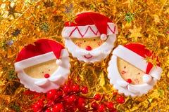 Weihnachtsplätzchen mit Sankt stellen auf Goldenem gegenüber Stockfotografie