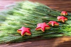 Weihnachtsplätzchen sternförmig mit roter Zuckerglasur, selektiver Fokus Lizenzfreies Stockbild