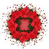 Weihnachtspoinsettia blüht ringsum Anordnung mit Konfettis Lizenzfreie Stockfotos