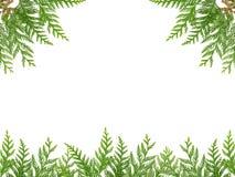 Weihnachtsrahmen mit der Fichte lokalisiert auf weißem Hintergrund Lizenzfreies Stockbild
