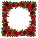 Weihnachtsrahmen mit Rosen, Stechpalme, Tannenzweigen und Kegeln Auch im corel abgehobenen Betrag Stockfotos